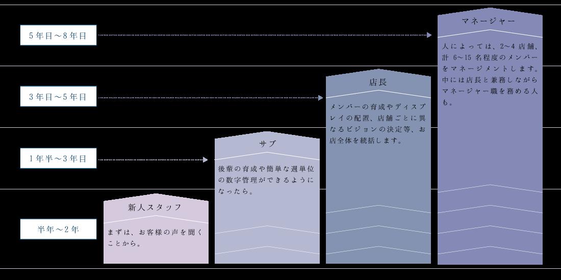 キャリアステップの図:半年〜2年:新人スタッフ 1年半〜3年目:サブ 3年目〜5年目:店長 5年目〜8年目:マネージャー